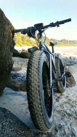 1000W Worland Fat Tire Electric Bicycles on the Beach