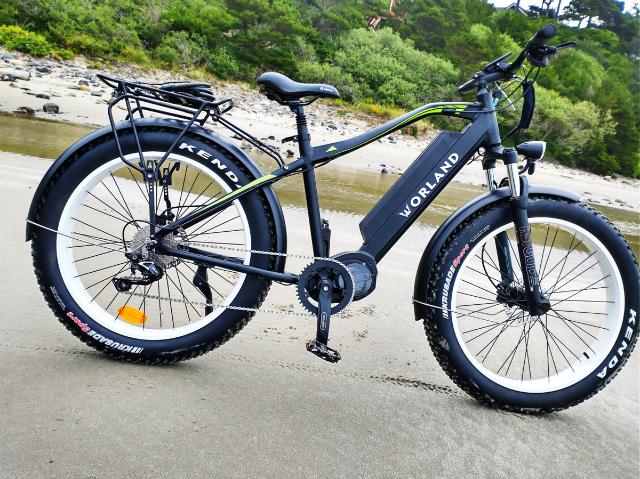 """Bronco 3"""" Fat Tire Electric Bicycle 750W"""